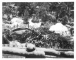 Japanese garden after snowfall, January 11, 1949.